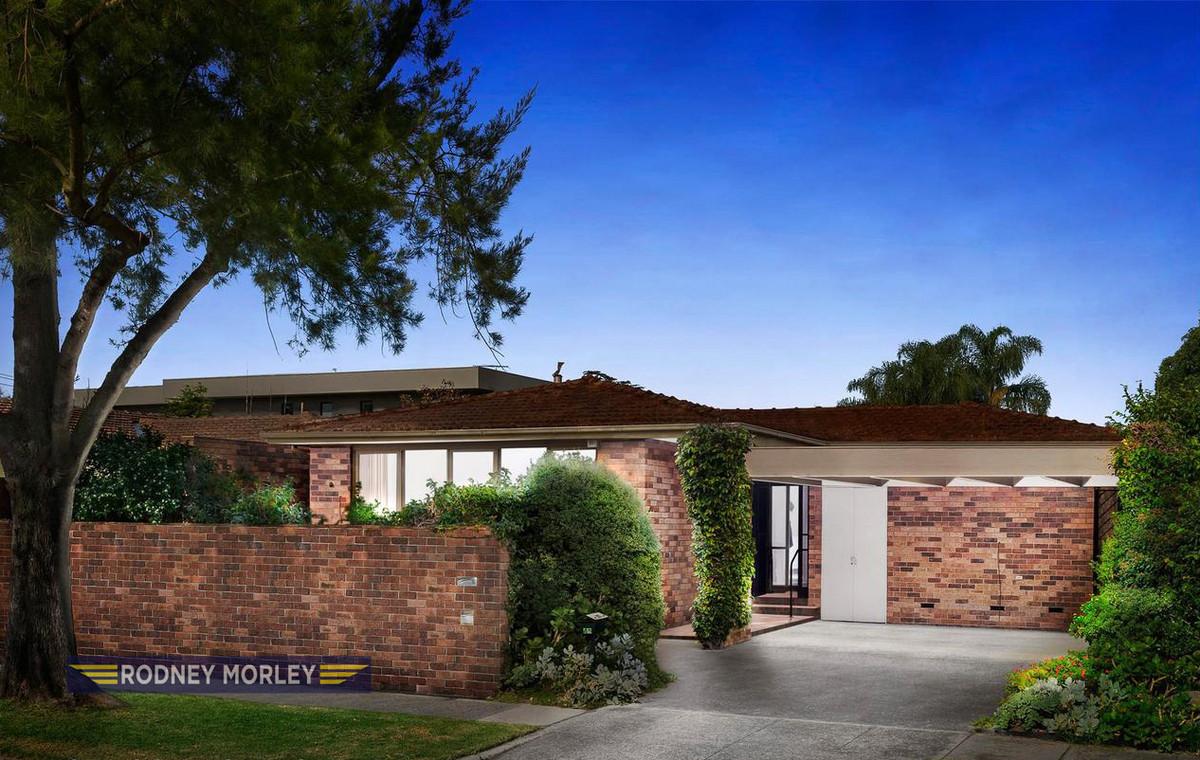 Maureen Maserow Agent At Rodney Morley Real Estate